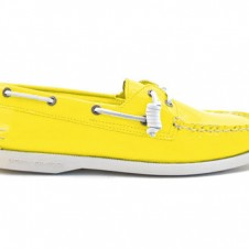 Squeeky duck Sperry