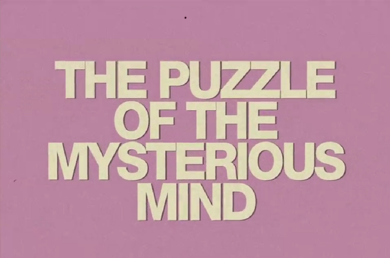 - markus-lupfer-resort-2012-the-puzzle-of-the-mysterious-mind-video-1