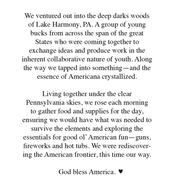 Essay on what is an american
