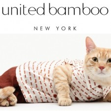 United Bamboo Cat Casting
